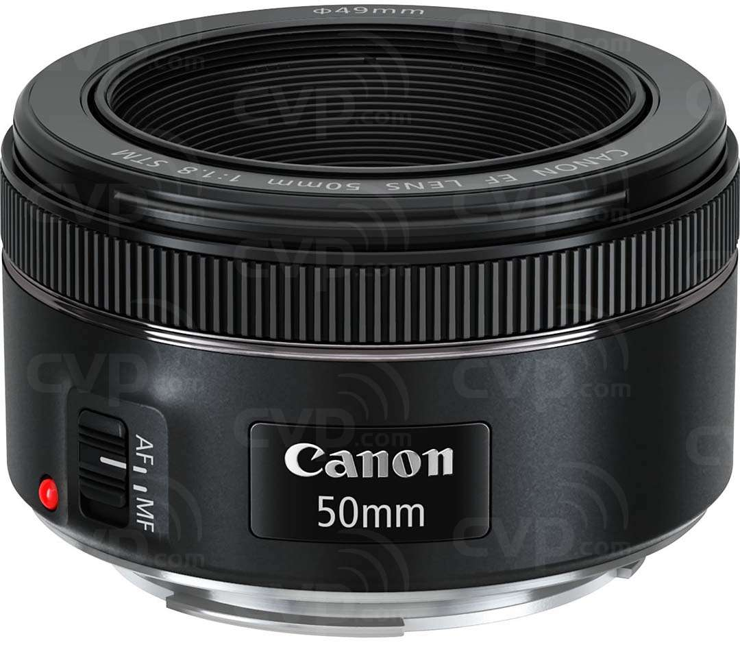 Canon 50mm f/1.8 STM, EF Mount Lens featuring a 7-blade