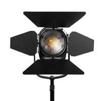 Ikan WS-F100 (WSF100) White Star 4in Daylight LED Fresnel Light - 100W