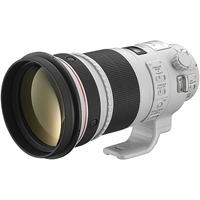 Canon EF 300mm f/2.8L IS II USM L Series Telephoto Lens (Canon p/n 4411B005AA)
