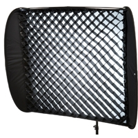 Lastolite LL LS2956 (LLLS2956) Fabric Grid light modifier for the Ezybox II Switch XLarge Narrow softbox