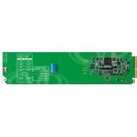 Blackmagic Design OpenGear Converter - Audio to SDI (BMD-CONVOGCAUDS)