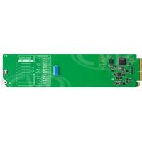 Blackmagic Design OpenGear Converter - Sync Generator (BMD-CONVOGSYNC)