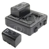 JVC IDX-Q10-E (IDXQ10E) IDX Power Pack Charger Kit with Batteries (x2) for GY-HMQ10, GY-HM600 and GY-HM650 Camcorders