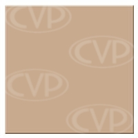 Tiffen 44WBPM14 (44WBPM14) 4x4 Warm Black Pro-Mist 1/4 Filter