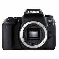 Canon EOS 77D 24.2 Megapixel Digital SLR Camera Body Only - Black (p/n 1892C019AA)