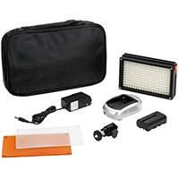 Lishuai (LED209A) 5600K Daylight on Camera LED Light including Case, Battery, Charger and Mains Adapter
