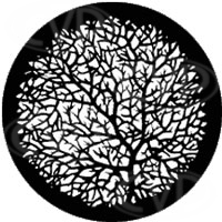 rosco 77777 (DHA 106) Bare Branches 2 gobo by David Hersey in M size (compatible with dedolight projection system)