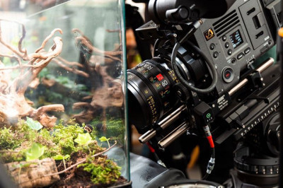 One of our awesome rigs at Wildscreen last week. Sony VENICE, ARRI Hardware, IBE Optics Raptor 60mm Macro & cPRO Motor ...