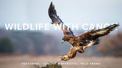 Come & capture some stunning wildlife with Canon's latest kit and wildlife imaging experts, Wild Arena. Sign up via -